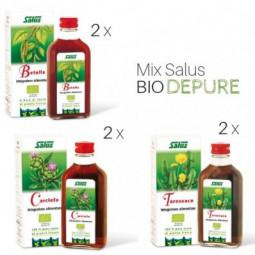Mix di succhi di pianta fresca Bio Depure